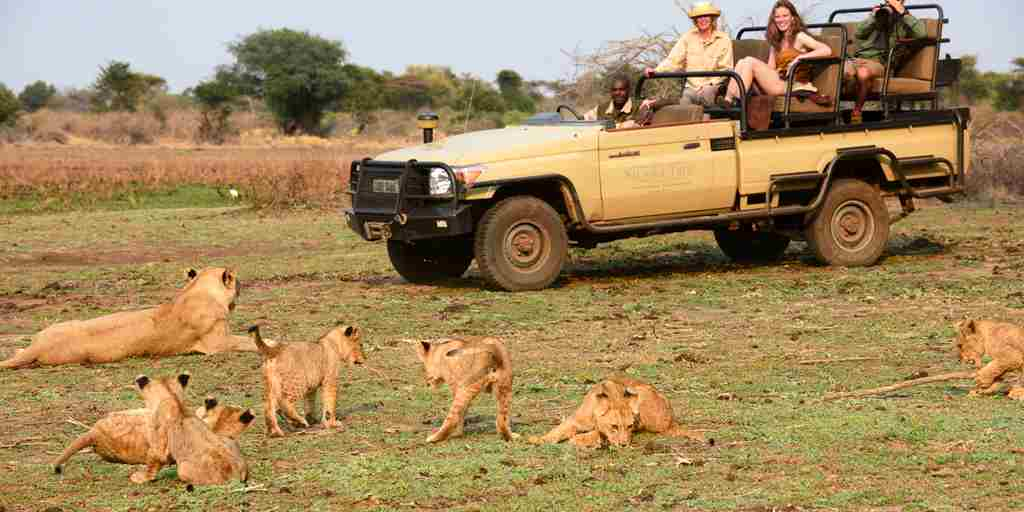 STC Game Drive 10