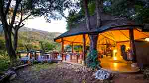 kitich forest camp overview kenya yellow zebra safaris